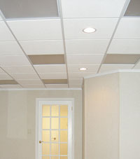 Basement Ceiling Tiles for a project we worked on in West Allis, Wisconsin & Illinois